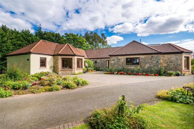 Thumbnail Detached house for sale in Balone Cottage, St. Andrews, Fife