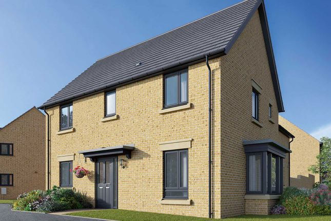 "Thumbnail Detached house for sale in ""The Clarence"" at Field Road, Ramsey, Huntingdon"