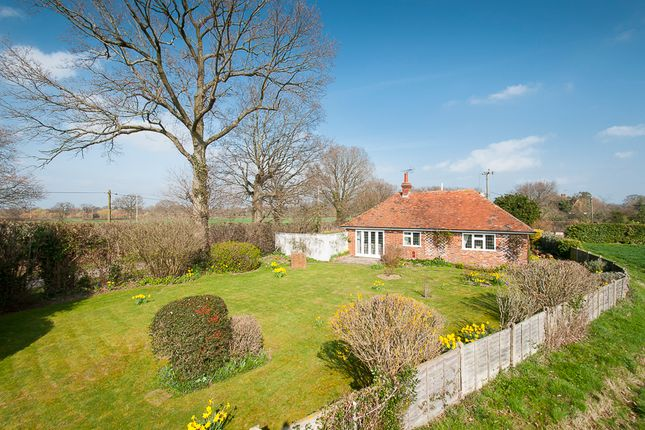 Thumbnail Detached house for sale in Romden Road, Smarden