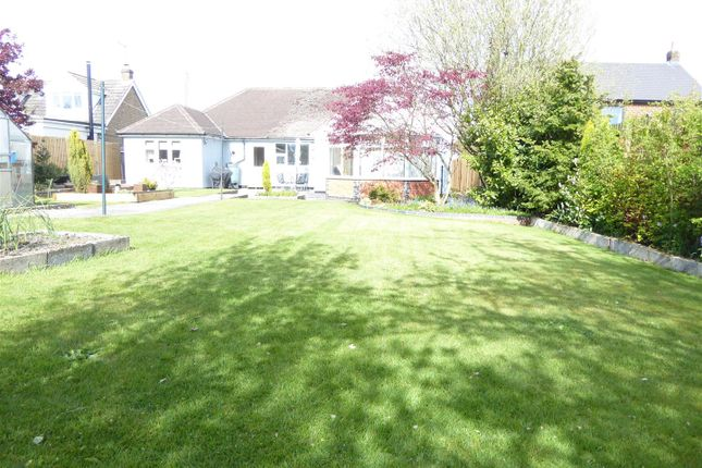 3 bed detached bungalow for sale in Butt Lane, Blackfordby DE11