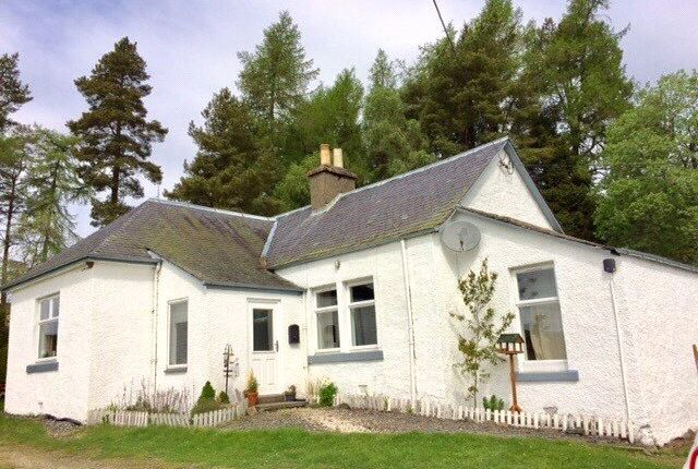Thumbnail Detached house to rent in Upper Hillside Cottage, Persie Estate, Bridge Of Cally, Blairgowrie, Perth And Kinross