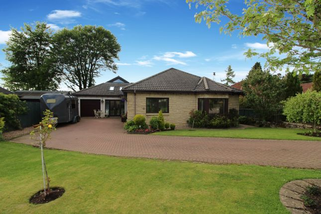 Thumbnail Detached bungalow for sale in Mart Lane, Kirriemuir