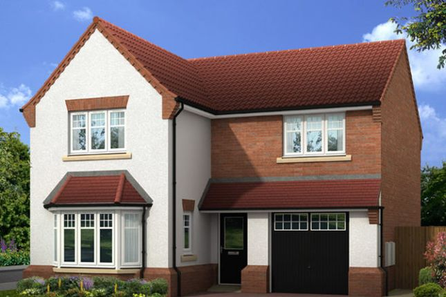 """Thumbnail Detached house for sale in """"The Settle V1 Contemporary"""" at Edenbrook Vale, Park Road, Pontefract"""