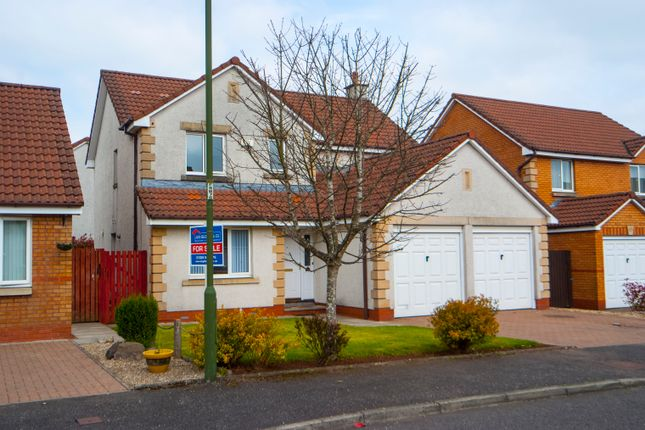 Thumbnail Detached house for sale in Alloway Wynd, Larbert, Falkirk, Stirlingshire