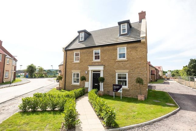 Thumbnail Detached house for sale in Long Orchard Way, Martock, Somerset