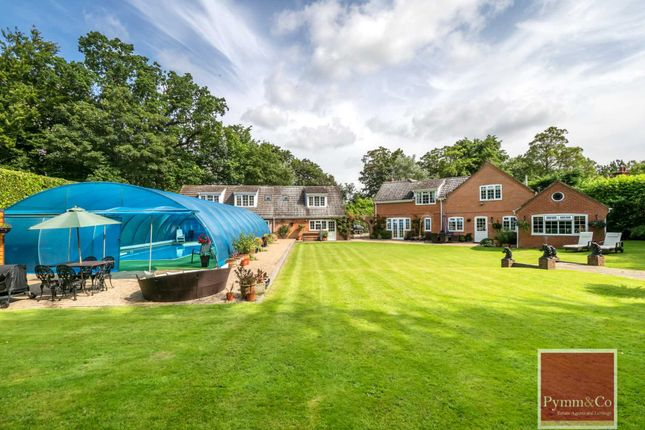 Thumbnail Detached house for sale in Witton, Norwich