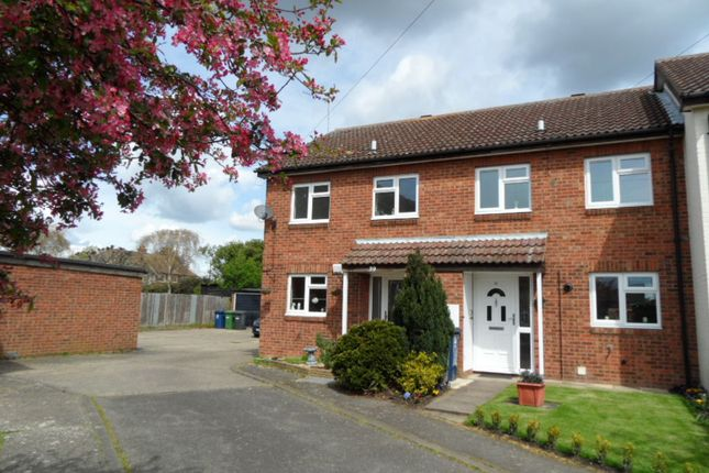 Thumbnail Semi-detached house to rent in Pennway, Somersham