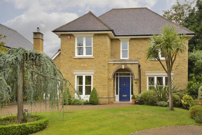 Thumbnail Detached house to rent in Grange Place, Stompond Lane