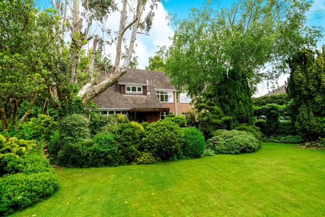 Thumbnail Detached house for sale in Milldown Road, Blandford Forum