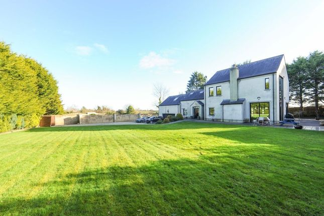 Thumbnail Detached house for sale in Main Street, Conlig, Newtownards