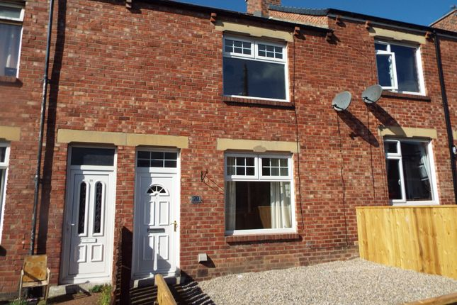 Thumbnail Terraced house to rent in Ernest Street, Pelton, Chester Le Street
