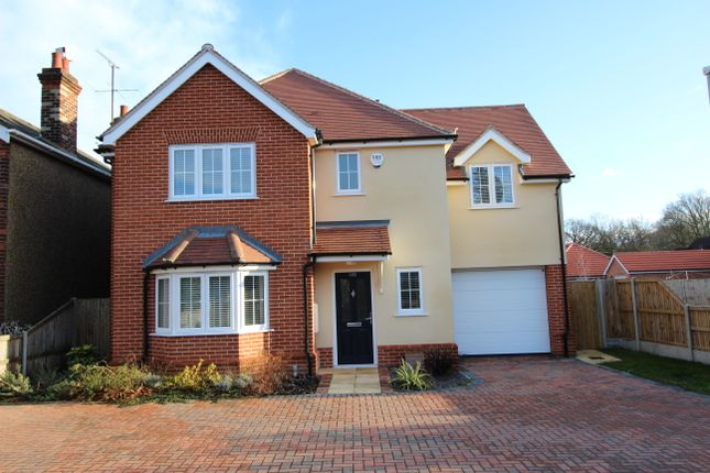 Thumbnail Detached house to rent in Orchard Gardens, Ipswich Road, Colchester