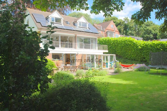 Thumbnail Detached house to rent in Yarmouth Road, Thorpe St. Andrew, Norwich