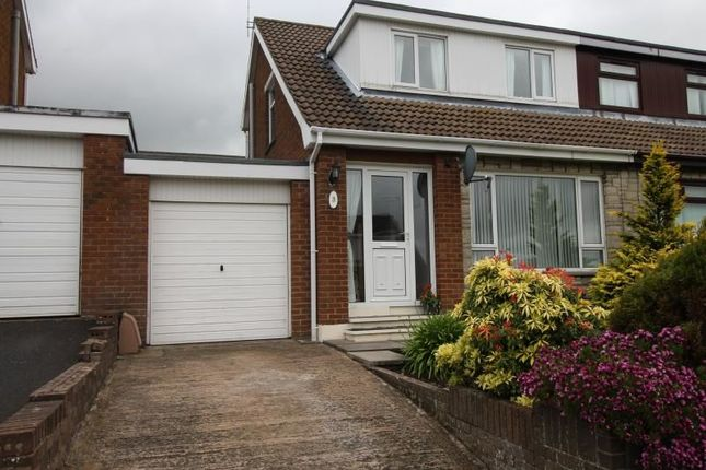 Thumbnail Bungalow to rent in Islandmore Avenue, Conlig, Newtownards