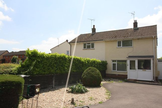 Thumbnail Semi-detached house to rent in Wordsworth Drive, Taunton