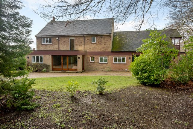 Thumbnail Detached house for sale in Judges Drive, Norwich
