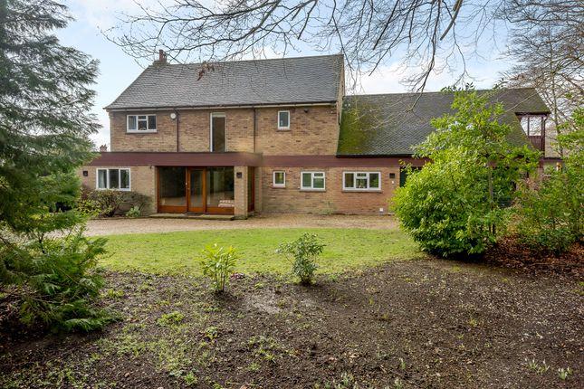 Thumbnail Detached house for sale in Judges Drive, Norwich