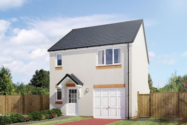 "Thumbnail Detached house for sale in ""The Fortrose"" at Hamilton Road, Larbert"