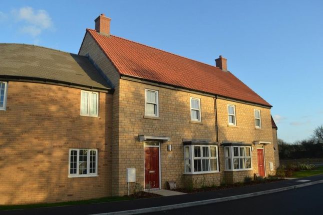 Thumbnail Terraced house for sale in Long Orchard Way, Water Street, Martock, Somerset
