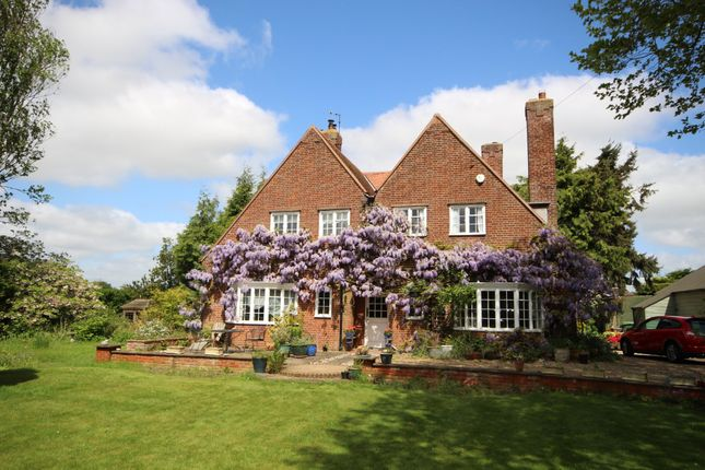 Thumbnail Detached house for sale in South Walsham Road, Acle, Norwich