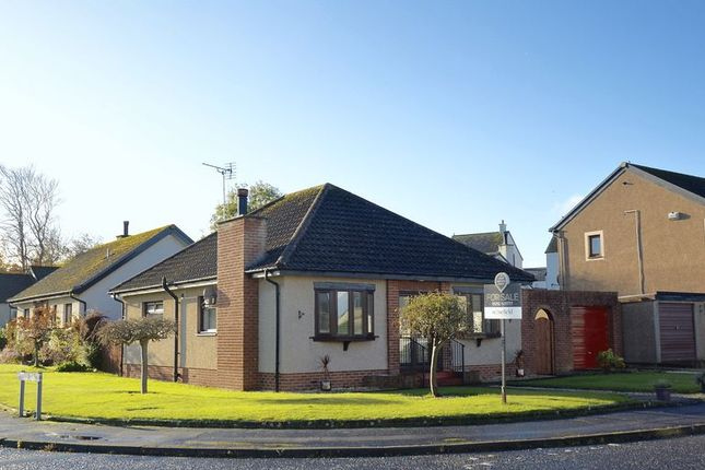 Thumbnail Bungalow for sale in Abbots Way, Doonfoot, Ayr