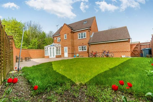 Thumbnail Detached house for sale in Woden Road South, Wednesbury