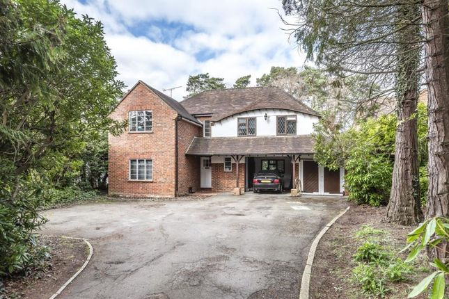 Thumbnail Detached house to rent in Heather Drive, Ascot