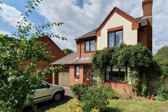 Thumbnail Detached house for sale in The Limes, Motcombe, Shaftesbury