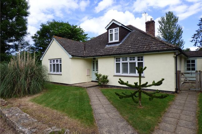 Thumbnail Detached bungalow for sale in Chetnole, Sherborne, Dorset
