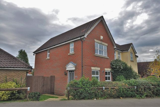 Thumbnail Semi-detached house to rent in Martens Meadow, Braintree