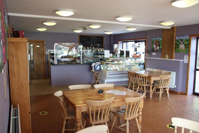 Thumbnail Restaurant/cafe for sale in Cafe & Sandwich Bars DL10, Ellerton Upon Swale, North Yorkshire