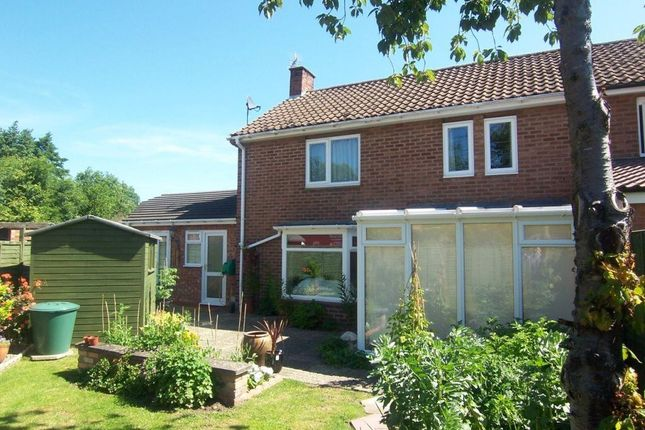 Thumbnail Semi-detached house to rent in Shuckburgh Crescent, Bourton, Rugby