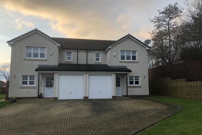 Thumbnail Semi-detached house to rent in Baxter Brae, Cleland, Motherwell