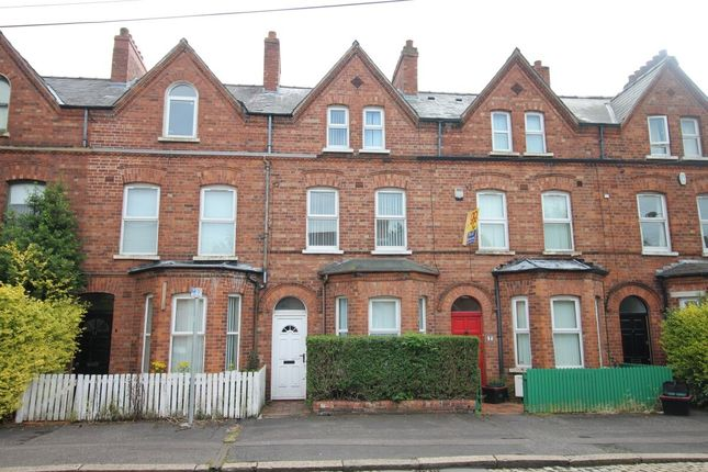 Thumbnail Terraced house for sale in Rugby Parade, Belfast