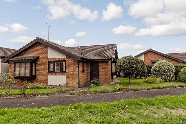 Thumbnail Bungalow for sale in Brooklyn Gardens, Port Talbot, Neath Port Talbot.