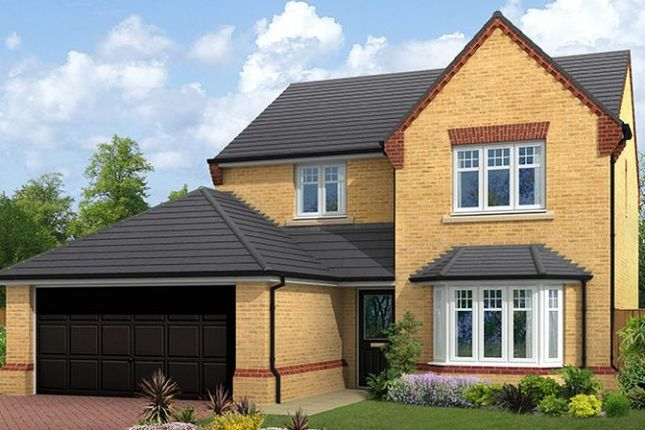 "Thumbnail Detached house for sale in ""The Ingleton"" at Lovesey Avenue, Hucknall, Nottingham"