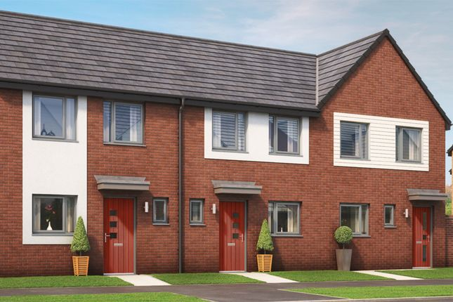 """Thumbnail 2 bedroom property for sale in """"The Normanby"""" at Haughton Road, Darlington"""