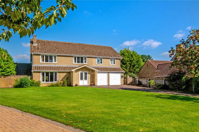Thumbnail Detached house for sale in Shepherds Lane, Greetham, Oakham