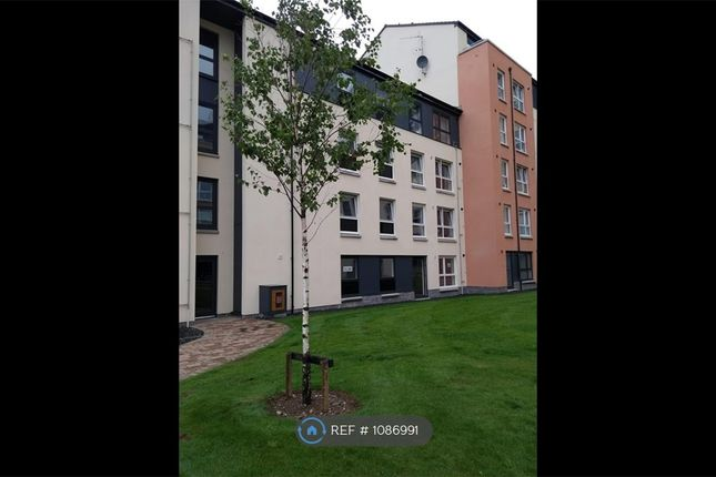 2 bed flat to rent in Park Road, Aberdeen AB24