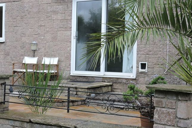 Thumbnail Flat to rent in Richmond Close, Torquay