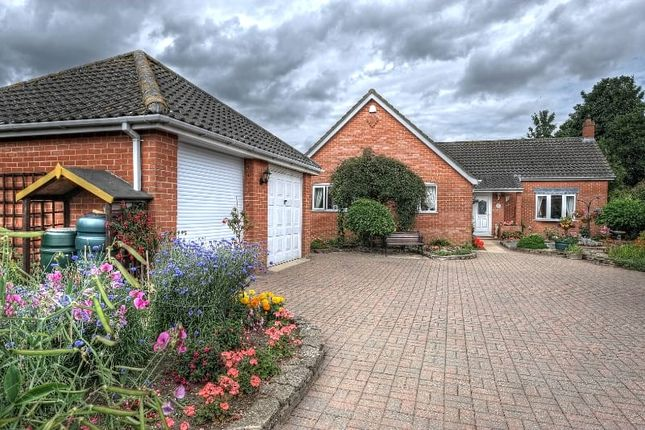 Thumbnail Detached bungalow for sale in Hardingham Street, Hingham, Norwich