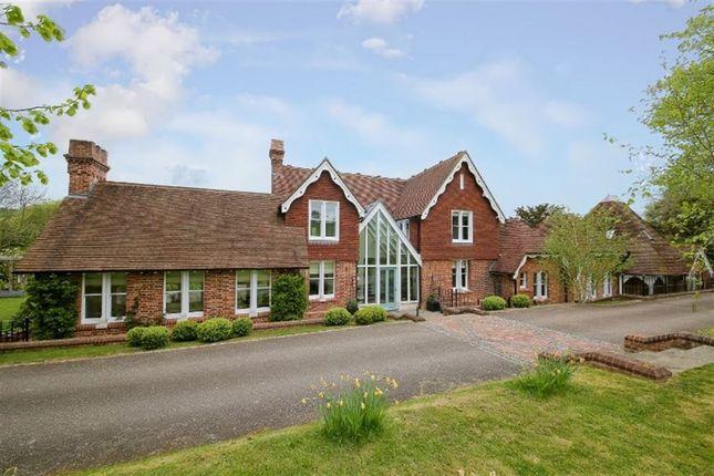 Thumbnail Detached house to rent in Shoreham Road, Shoreham, Sevenoaks