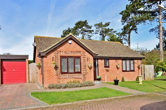 Thumbnail Bungalow for sale in Amos Close, Herne Bay, Kent