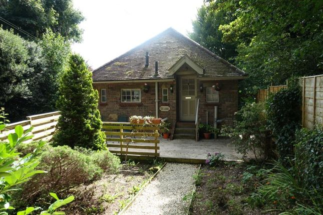 Thumbnail Detached bungalow to rent in College Lane, East Grinstead