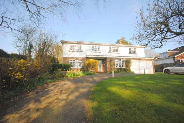 Thumbnail Detached house to rent in Park View Road, Woldingham, Caterham