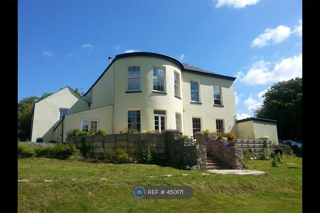 Thumbnail Flat to rent in Holyland Road, Pembroke