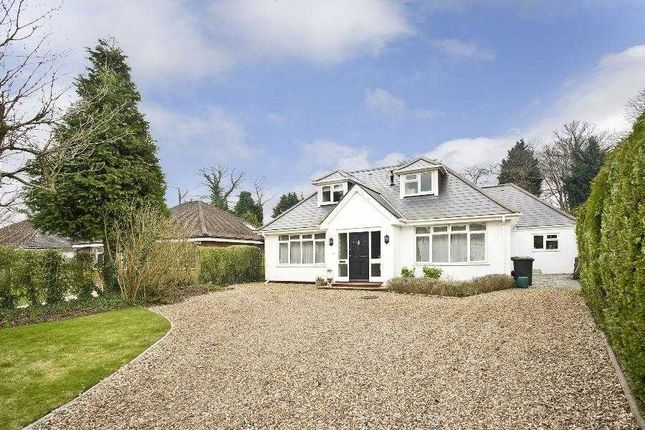 5 bed detached house to rent in Trumpsgreen Avenue, Virginia Water