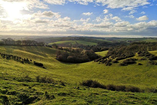 Land for sale in Penstone, Colebrooke, Crediton