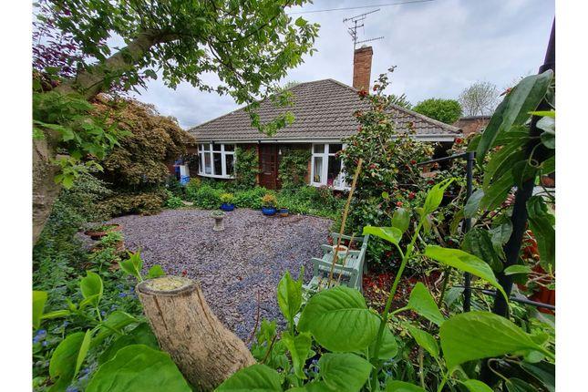 Thumbnail Detached bungalow for sale in Audley Avenue, Newport