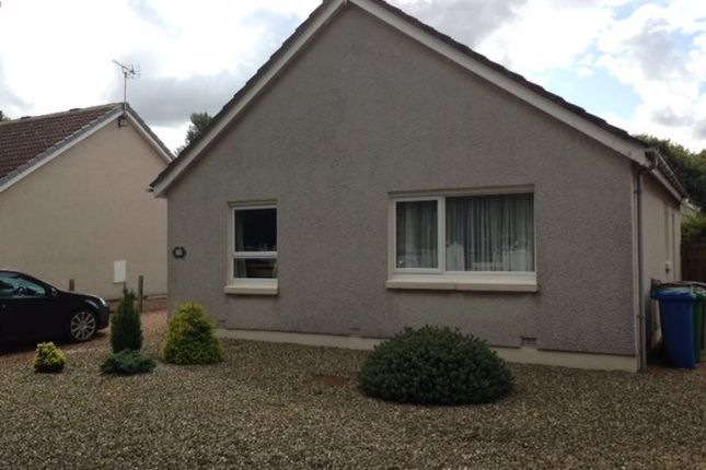 Thumbnail Bungalow to rent in Ruthven Place, St Andrews